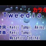Tweedia (カラオケ) / 安田レイ