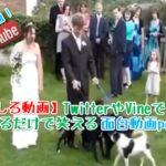 面白い映像放送事故映像ハプニング映像part43 funny moving,funny videos japan,best funny video