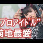 """BABYMETAL『MOAMETAL』職業""""プロアイドル"""""""