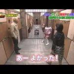 ももいろクローバーZ、百田夏菜子、クイズ番組で大活躍!