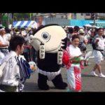 2013年・カツオ人間・島崎和歌子(四国銀行) 第60回よさこい祭り(本祭2日目)